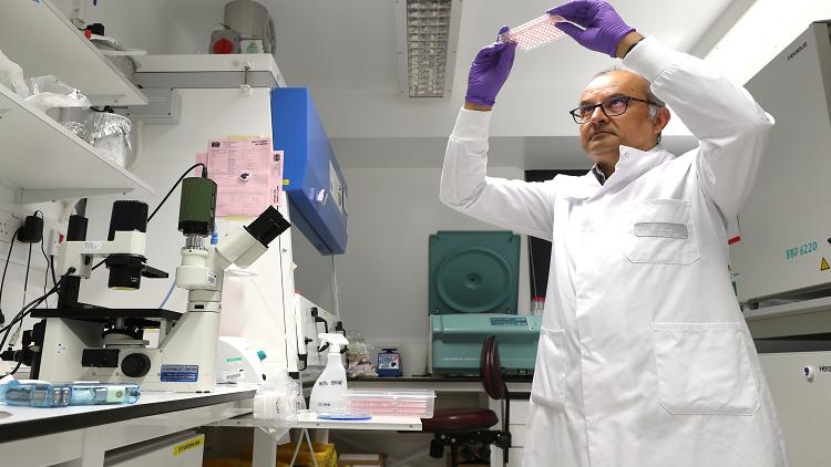 اكتشاف بكتيريا تحدد خصوبة الرجال