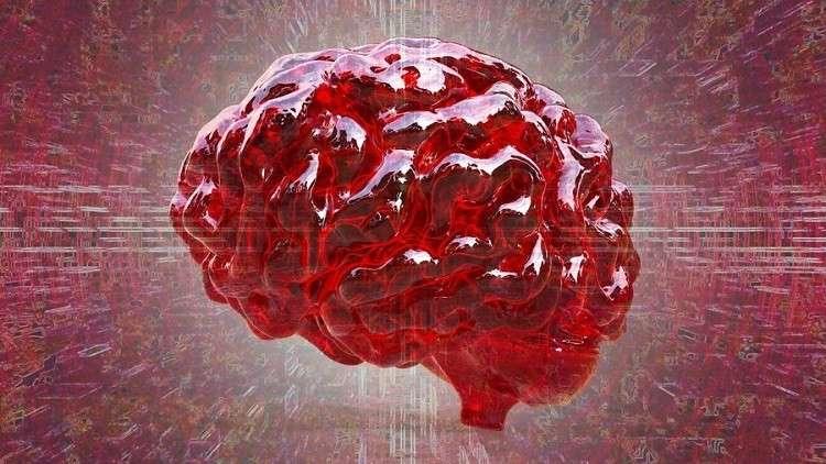 تحديد مكان حدوث «السحر» داخل الدماغ البشري!