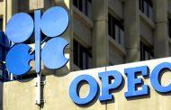 منظمة اوبك متفائلة بمستقبل صناعة النفط حركة السوق متماسكة والتراجع لن يؤثر
