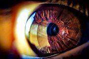 الخلايا الجذعية قد تكون مفتاح القضاء على العمى