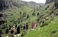 «درب الضنية» تنظم مسيرا جبليا لاكتشاف غابات ودروب المنطقة