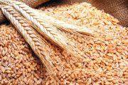 نقابة عمال المخابز تنتقد استبعادها عن لجنة صناعة الخبز