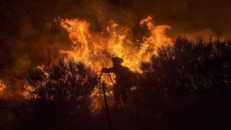اختراع «هلام» يمنع وقوع حرائق الغابات أو انتشارها!