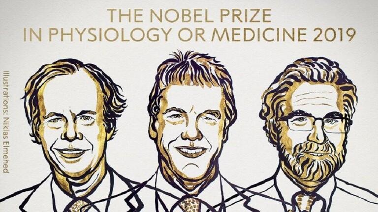 الأميركيان كايلين وسيمنزا والبريطاني راتكليف يفوزون بجائزة نوبل للطب