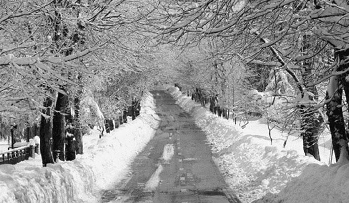العاصفة مجدداً.. أمطار غزيرة وثلوج على 1000 متر رياح ناشطة وتدن في درجات الحرارة حتى الجمعة