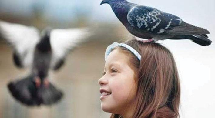 سكان قرية تركية يتقنون لغة العصافير!