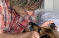 قصة حقيقية كلب سبح 11 ساعة لإنقاذ صاحبه
