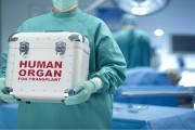 ماذا يحدث لجسم المتبرع بالأعضاء؟