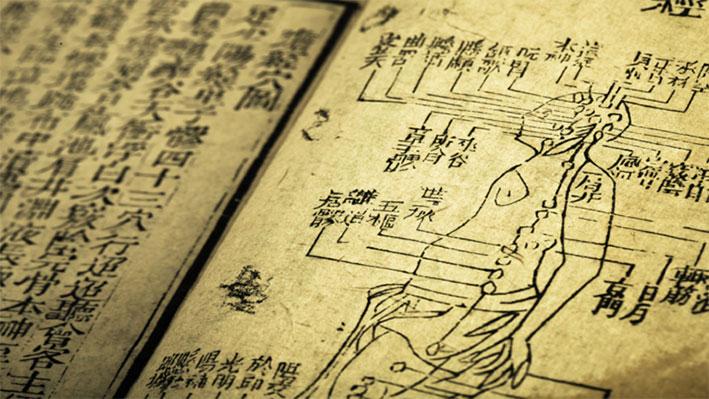 أقدم نص تشريحي على الإطلاق بمعلومات حيوية عن جسم الإنسان!
