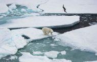 تسجيل أعلى درجة حرارة في القطب الشمالي منذ 3 آلاف سنة