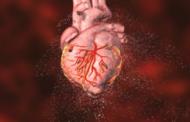 دراسة أمريكية: المولودون بعيوب في القلب أقل عرضة لخطر العدوى لـ