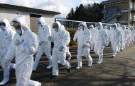 تفشي إنفلونزا الطيور في غرب اليابان