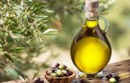 تجمع هيئات قطاع الزيتون: لحماية زيت الزيتون عبر استثنائه من اتفاقية التيسير العربية