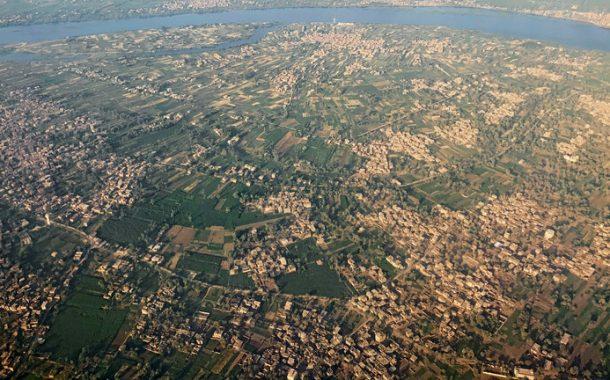 نقيب الفلاحين في مصر: مصر تشهد حدثا زراعيا غير مسبوق في تاريخ الزراعة