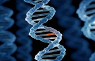 ينبوع الشباب.. اكتشاف طفرة جينية فريدة تحمي من أمراض قد تهدد الحياة