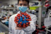 علماء في معهد ووهان للفيروسات يعترفون: تعرضنا لعض الخفافيش!