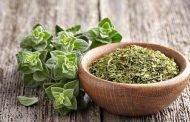 5 أعشاب سحرية لحماية الرئة والجهاز التنفسي