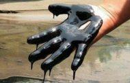 هبوط أسعار النفط رغم انخفاض كبير لمخزونات الخام الأمريكية