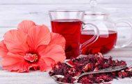 شاي الكركديه... 5 أسباب تدفعك لشربه
