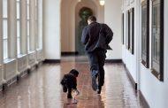 أوباما ينعى كلبه: خسرت أسرتنا رفيقاً مخلصاً