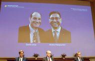 عالم  لبناني ينال جائزة نوبل للطب لعام 2021